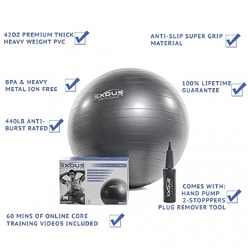 Exercise Fitness Yoga Core Stability Balance Swiss Ball 65cm Anti Burst  With 60 min of Professional online Video workouts & 2-Way-pump 100%  LIFETIME